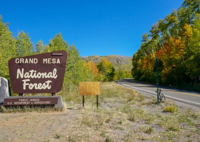 Grand Mesa National Forest in western Colorado is one of the many places I tested the Alfa