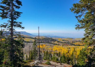 Colorado riding tip: Bring a camera
